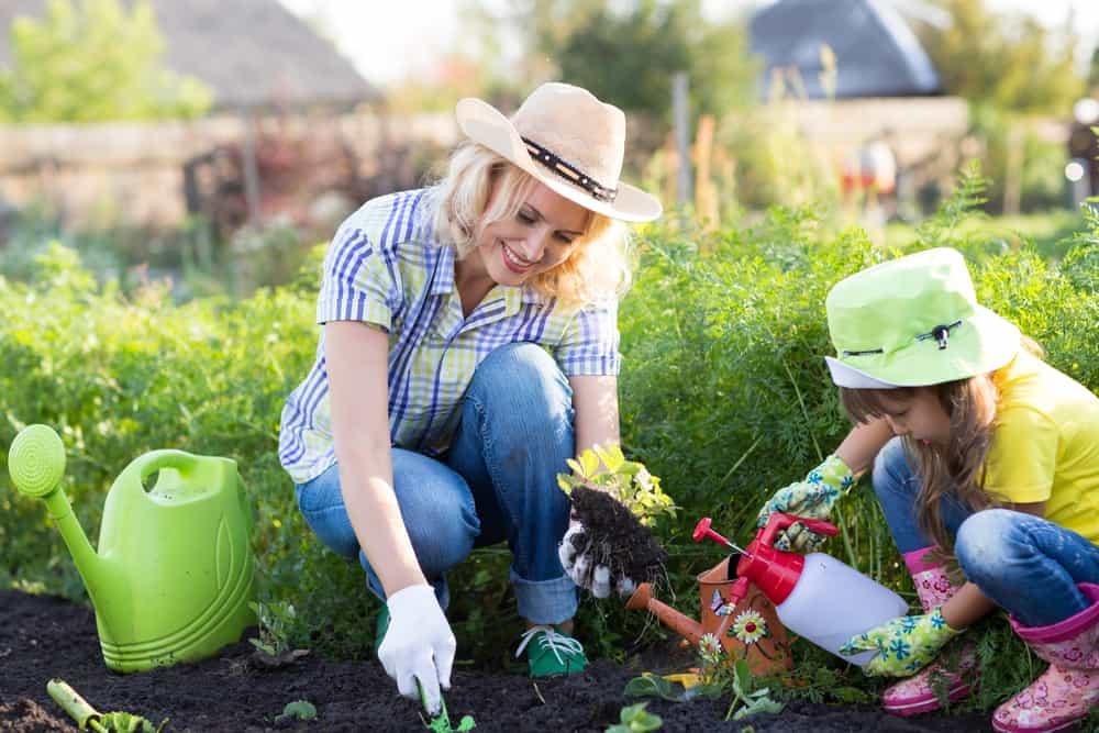 Come fare un diserbante ecologico in casa - fai da te