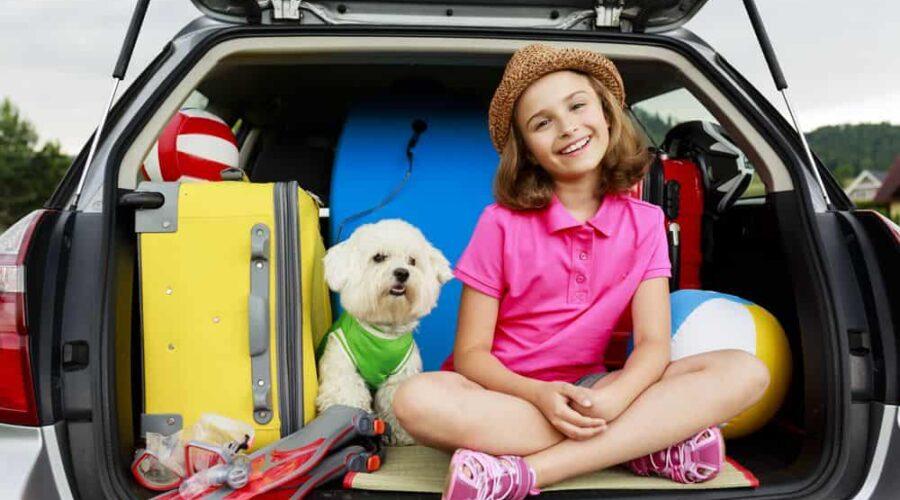 Cosa serve per viaggiare con il cane: info e consigli