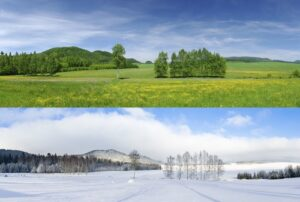 confronto stagioni