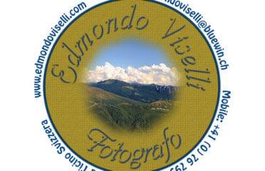 Edmondo Viselli
