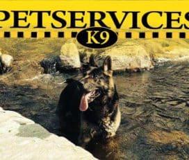 K9 Pet