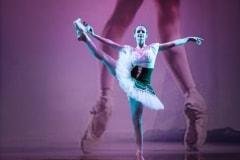 Centro del Balletto